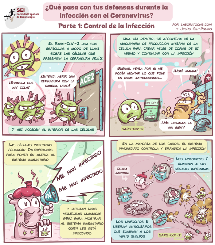 Cómic coronavirus defensas Parte 1